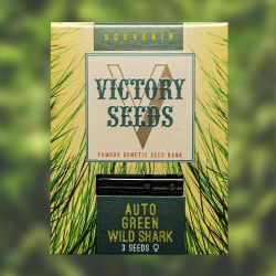 Auto Green Wild Shark - VICTORY SEEDS
