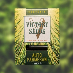 Auto Parmesan - VICTORY SEEDS
