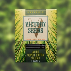 Auto Super Extra Skunk - VICTORY SEEDS
