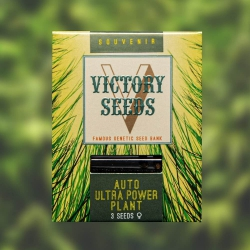 Auto Ultra Power Plant - VICTORY SEEDS
